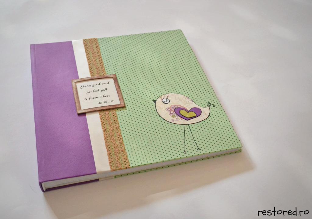 album-bebe-little-birdy