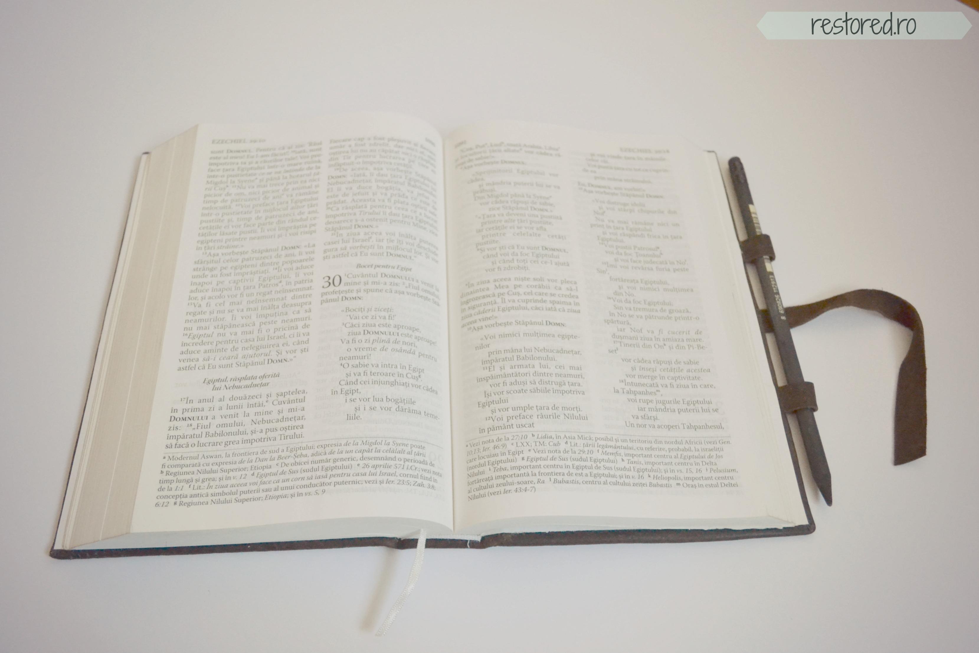 biblie-piele-maro-sistem-inchidere3