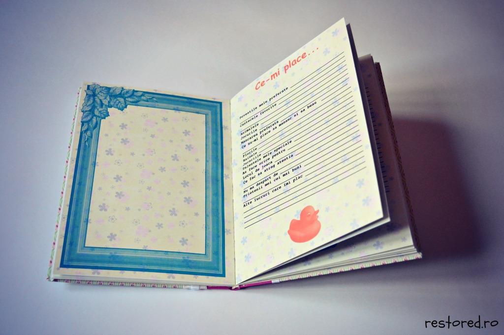 cartea-bebelusului-handmade2