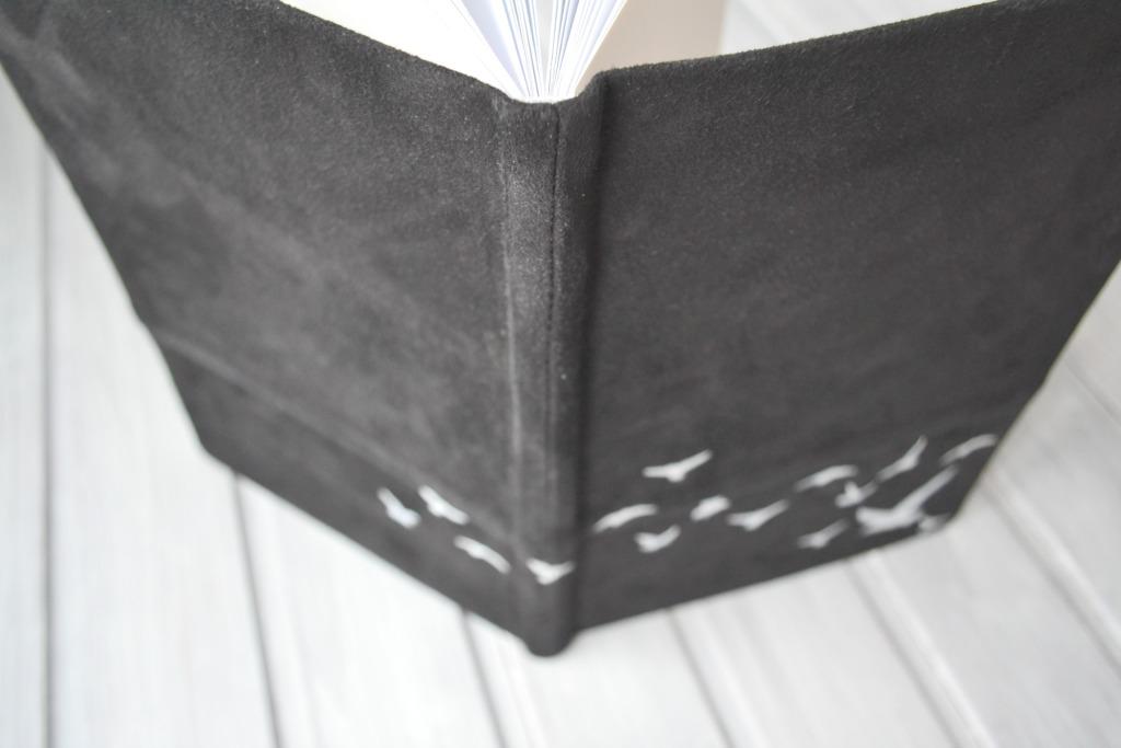 jurnal piele intoarsa pescarusi2.JPG