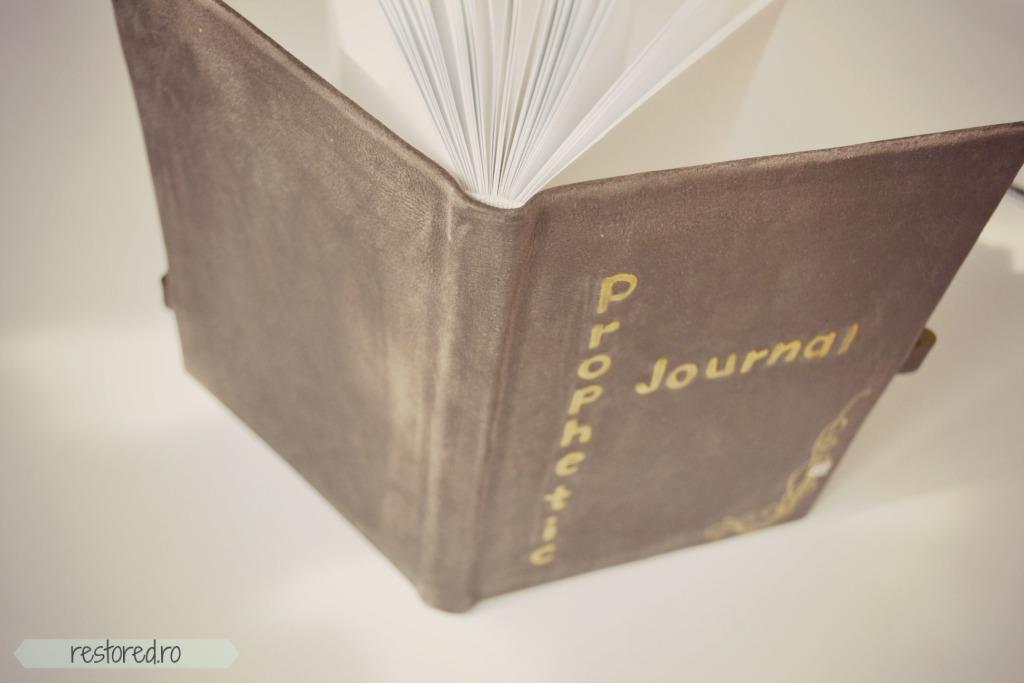 jurnal de piele profetic2