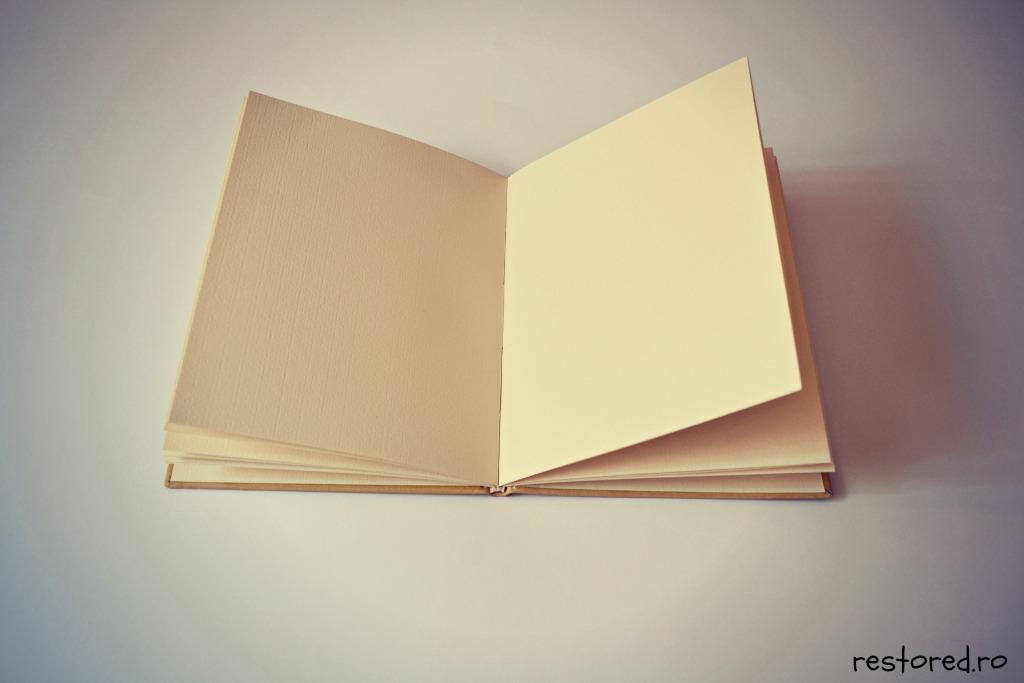 jurnal-de-piele-aniversar2